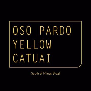 BRAZIL OSO PARDO YELLOW